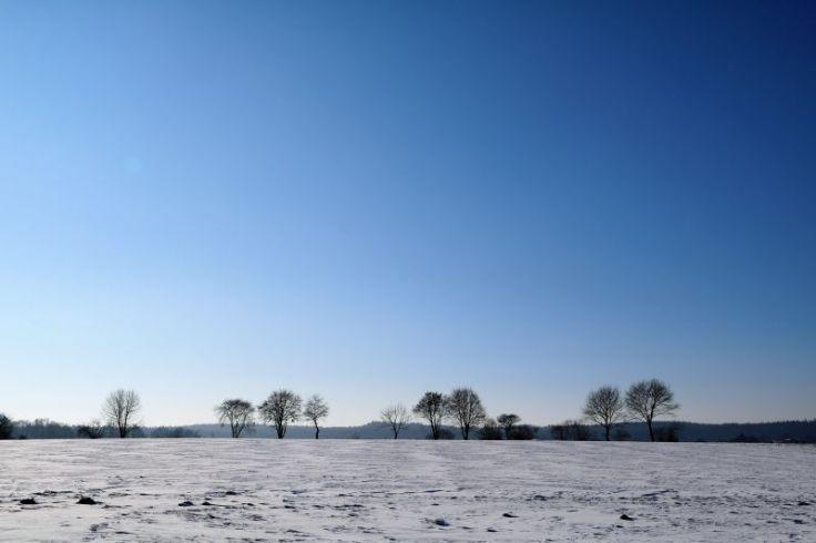2017_01_innviertel_im_winter_08