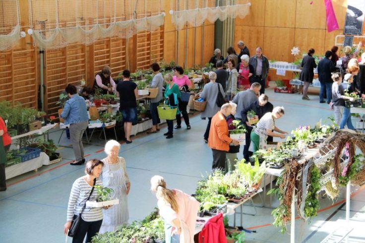 2017_05_mosauerin_pflanzenmarkt_tauschkreis_35