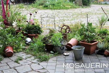 2017-08-mosauerin-hofrundgang-august-26