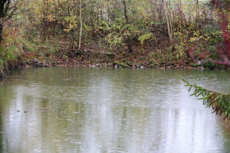 Teich im Regen